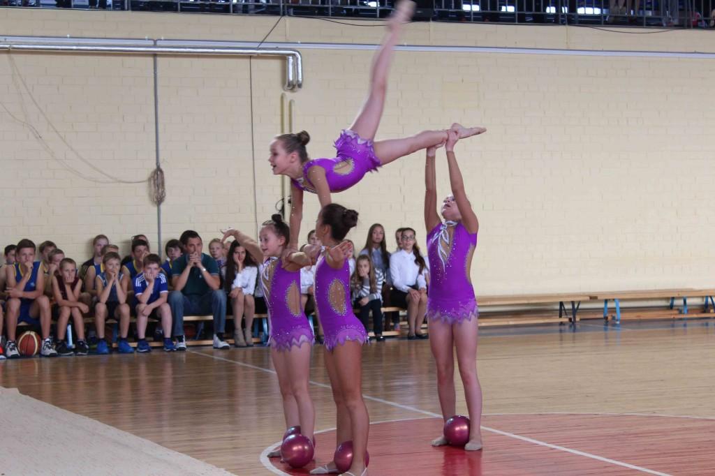 Девочки выбрали художественную гимнастику